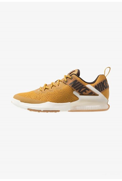 Nike ZOOM DOMINATION TR 2 - Chaussures d'entraînement et de fitness wheat/ale brown/velvet brown/pale ivory/gold dart